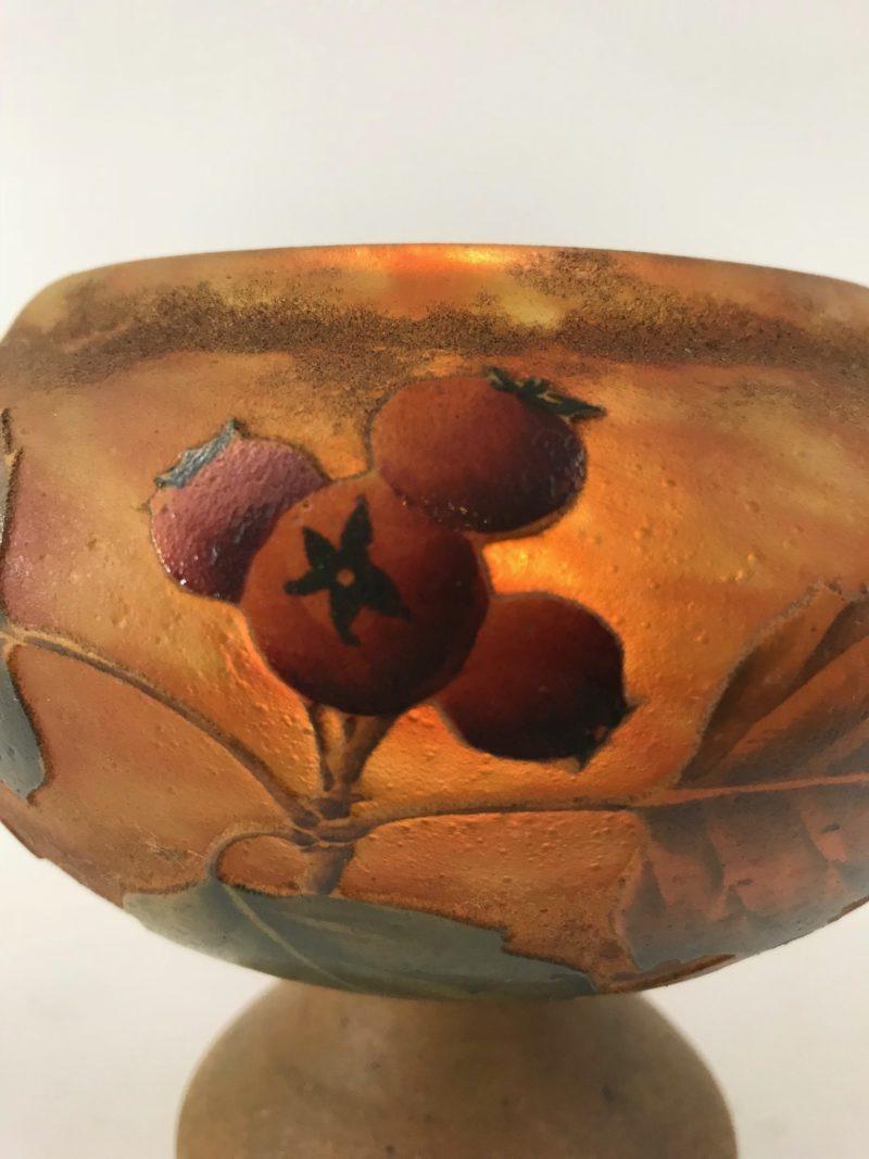 "Daum Nany Vase ""Hagebutte"""